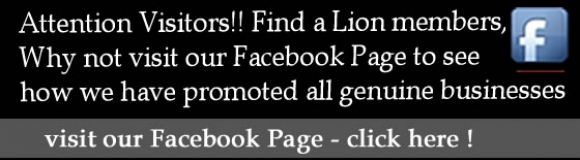 Find a lion promotes your business on social media
