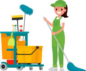 Best Bond Carpet Cleaners Brisbane - Ways of Carpe