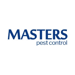 Cheap Pest Control Brisbane