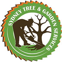 Emergency Tree Services Sydney Service