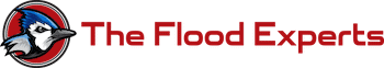 The Flood Experts