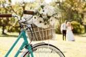 Best Budget Wedding Photography in Melbourne