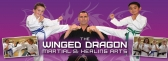 Martial Self Defence Epping | The Winged Dragon Ma