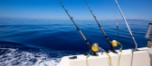 Why We Love Fishing In Melbourne?