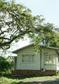 Best Tree Lopping Services Gold Coast