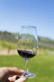 Adelaide Wine Tours