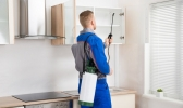 Professional Pest Removal Toowoomba