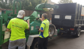 Top Tree Pruning Service