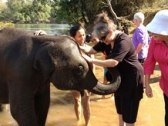 Incredible India Tours Package from Australia