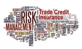 National Credit Insurance Brokers